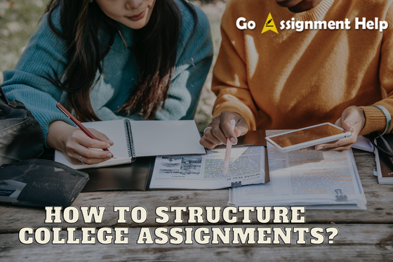 How to Structure College Assignments?